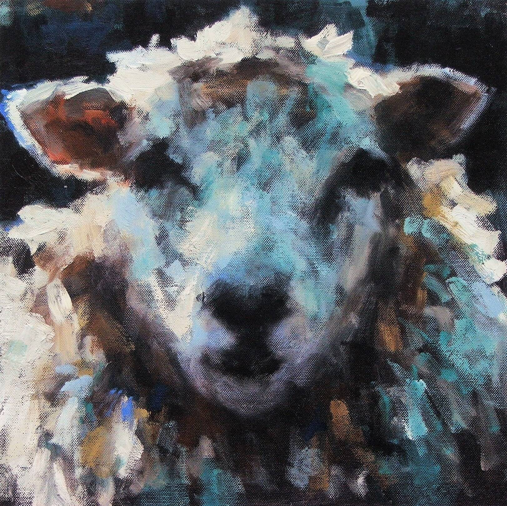 Sheep, Blue Face