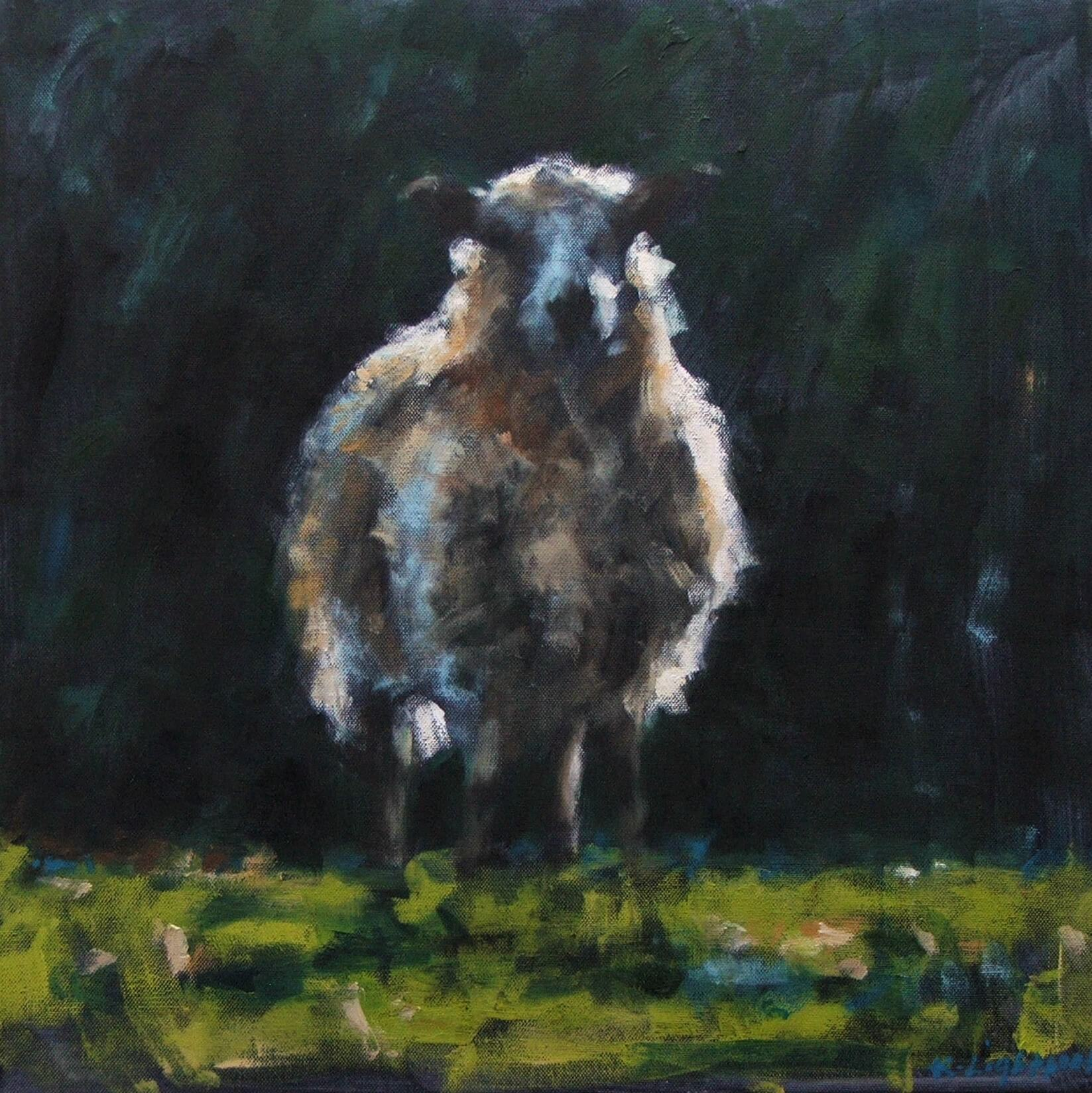 Sheep, Green Grass